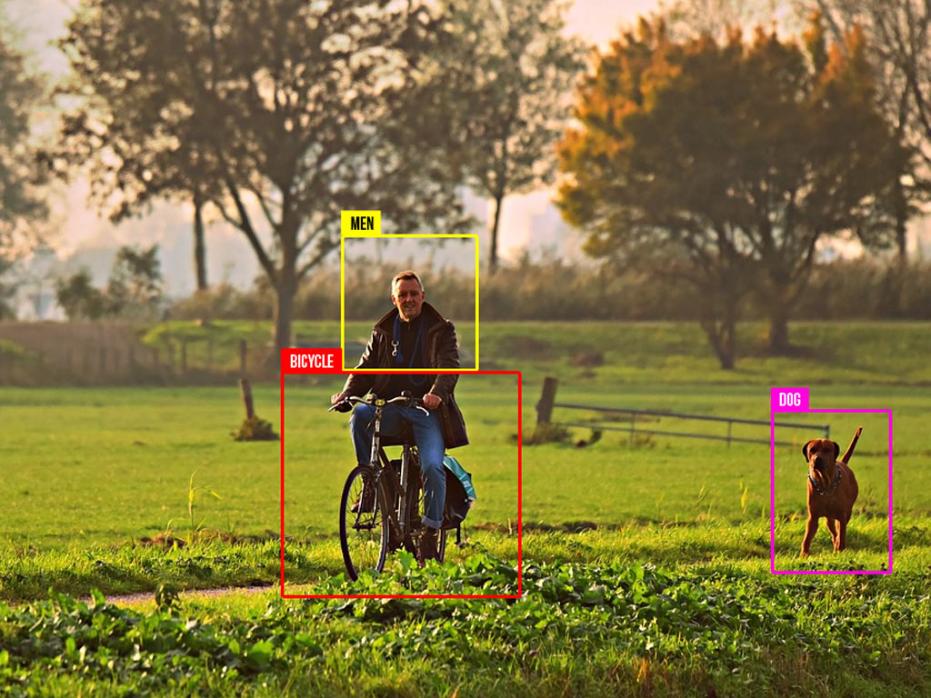 Image classification machine learning